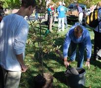 CLAS Tree Planting