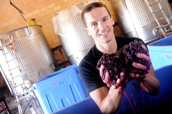 batch process of wine making essay