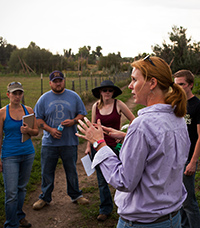 Amanda Weaver, Five Fridges Farm