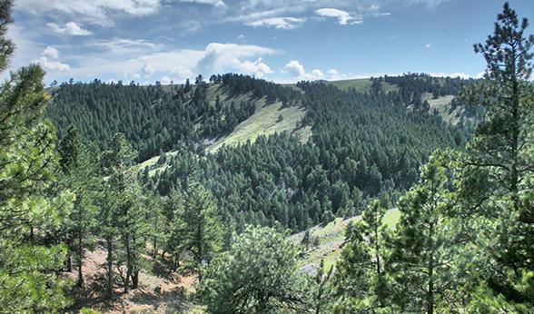 Apex Trail near Golden