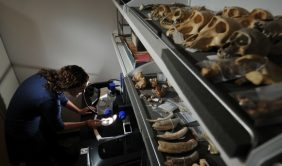 A CU Denver student works in an anthropology lab on campus.