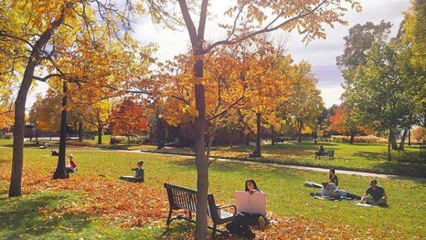 Fall photo winner, by Lana Garcia