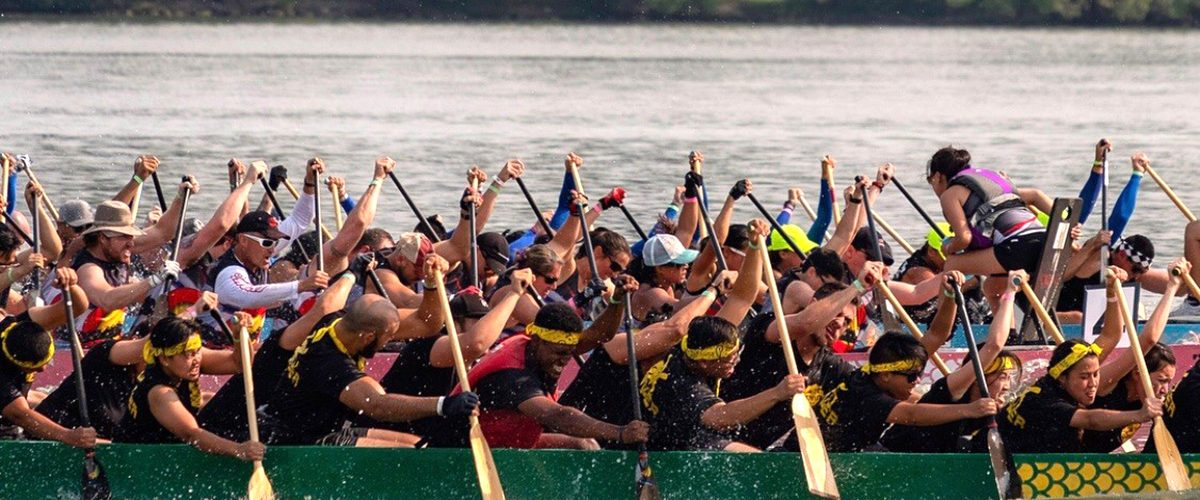 CU Denver Dragon Boat Team rowing in water