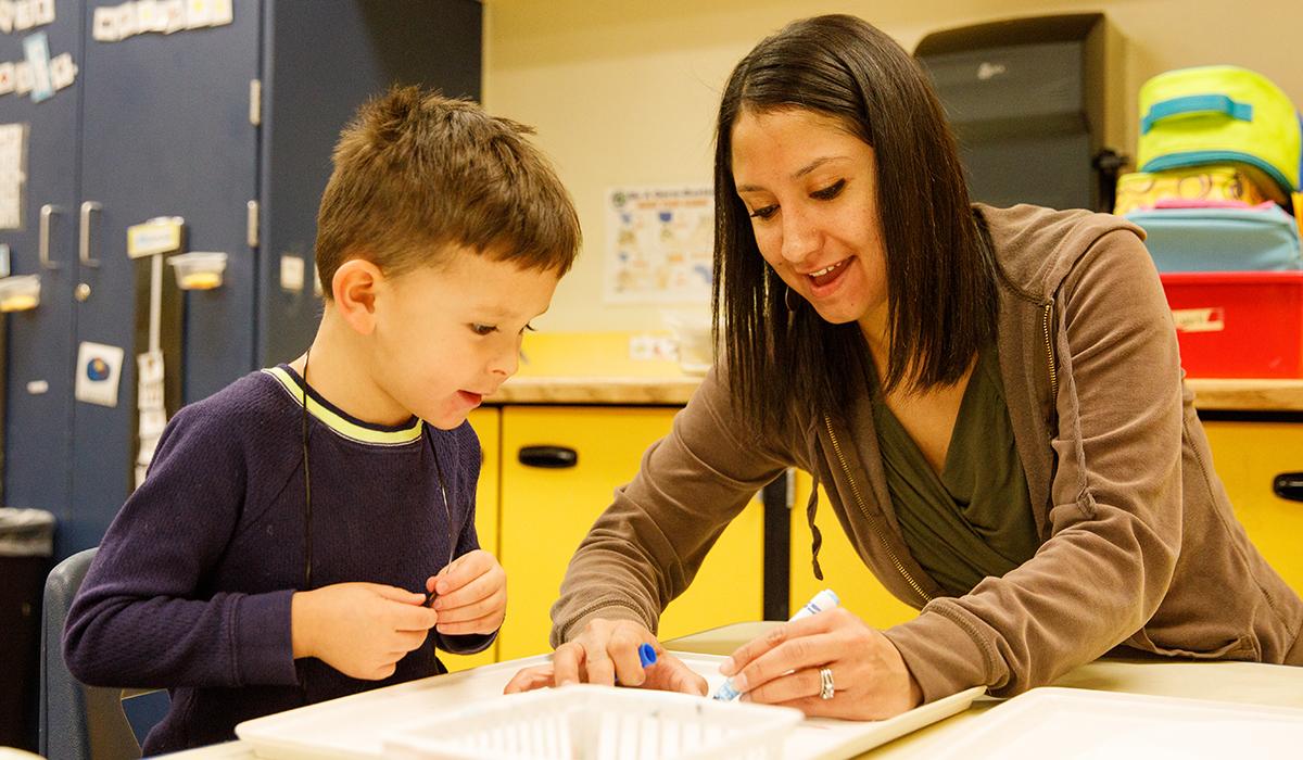 Boy watches teacher draw