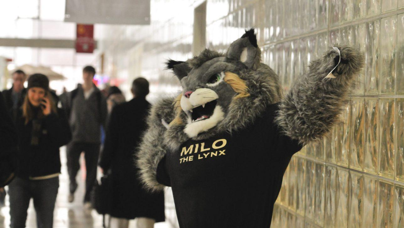 Mascot Milo the Lynx cheers