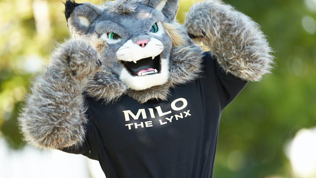 milo the mascot