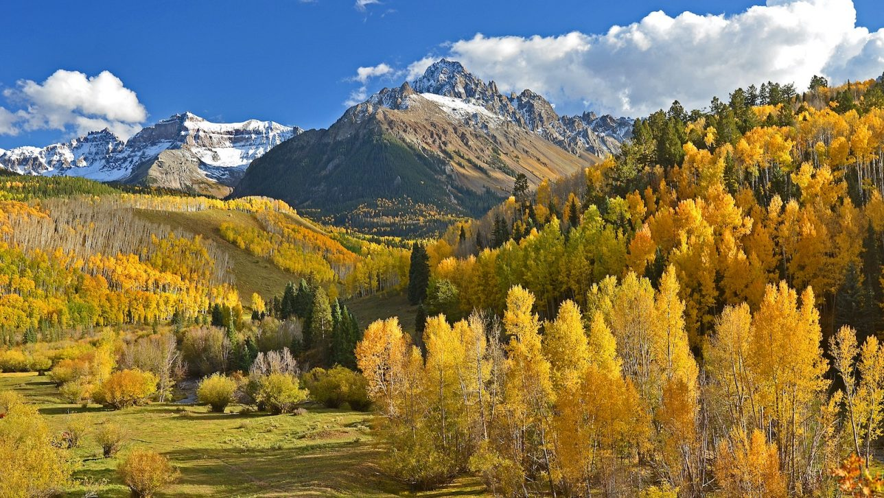 Scenic image of mountains and yellow trees