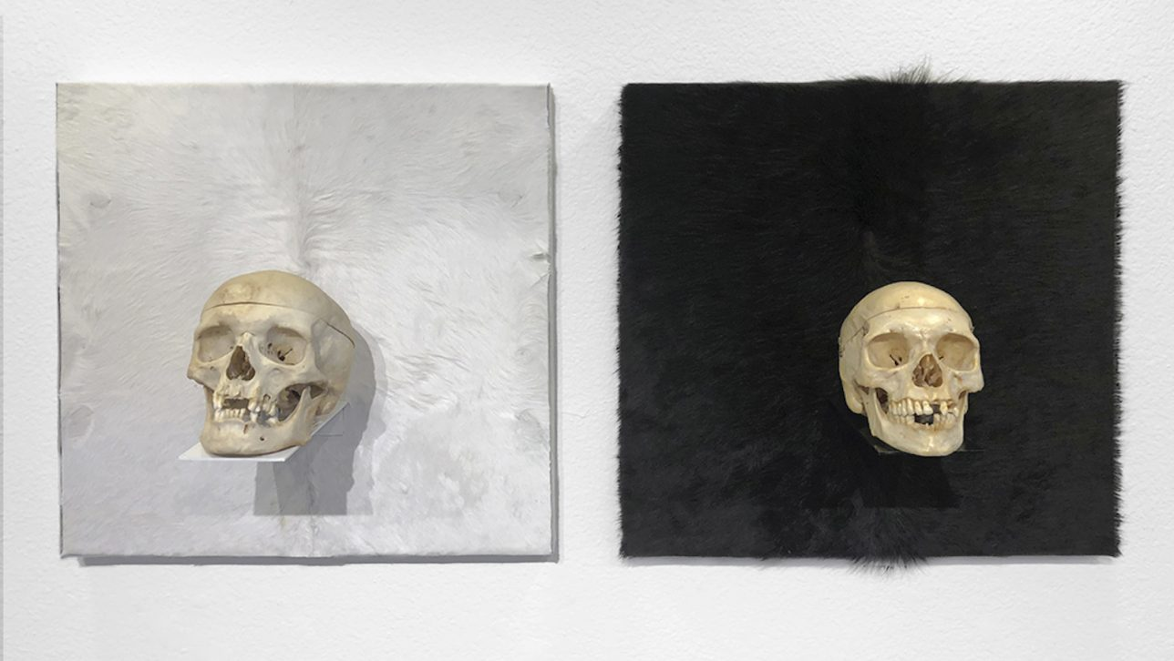 Photo of artwork featuring two skulls set on black and white backgrounds.