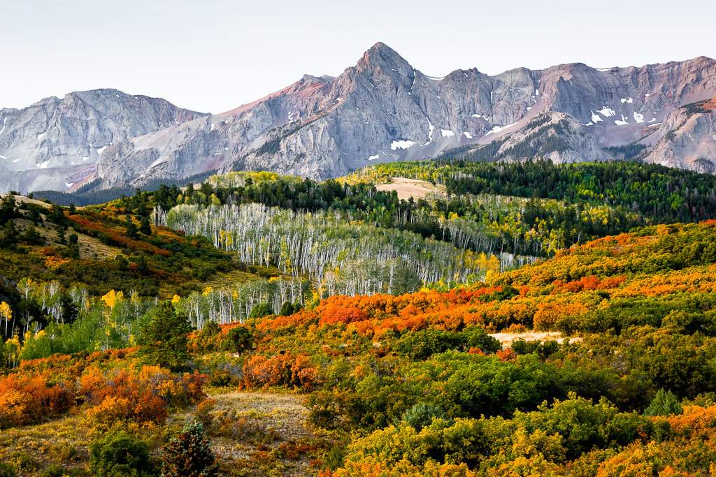 2020 Guide To Fall Foliage In Colorado Cu Denver News