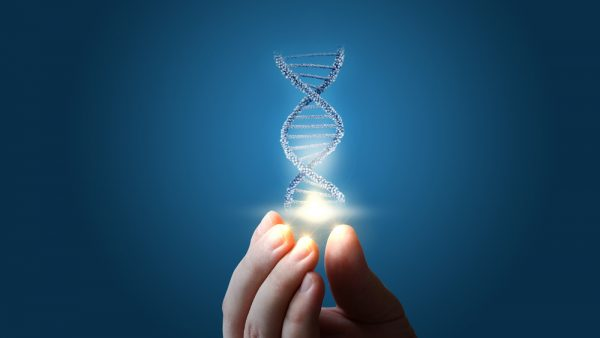 DNA and hand artistic image