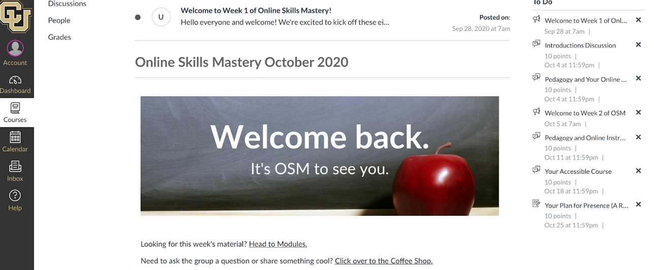 screenshot of Online Skills Mastery course