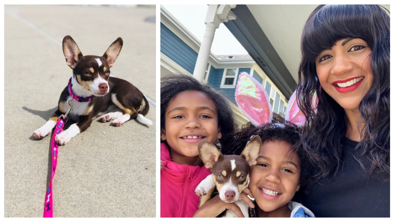 Athena Baca-Chieza and her children with puppy